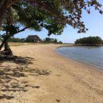 aduna beach house danao5
